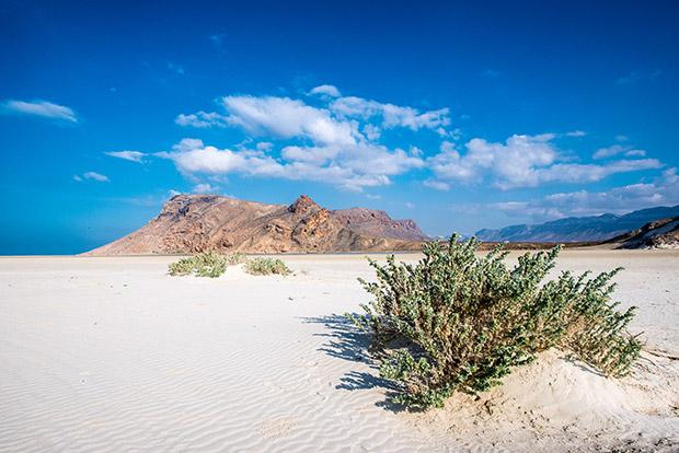 Socotra, Jemen