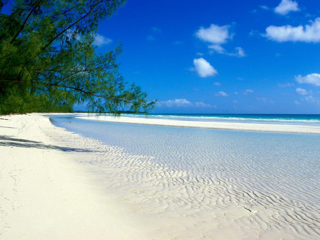 Pemba Island Tanzania (10)