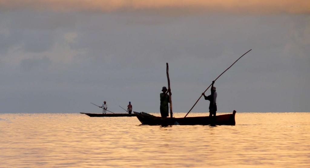 Pemba Island Tanzania (3)