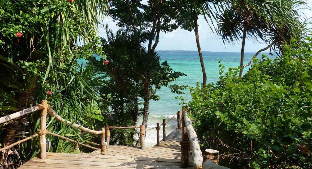 Pemba Island Tanzania (6)