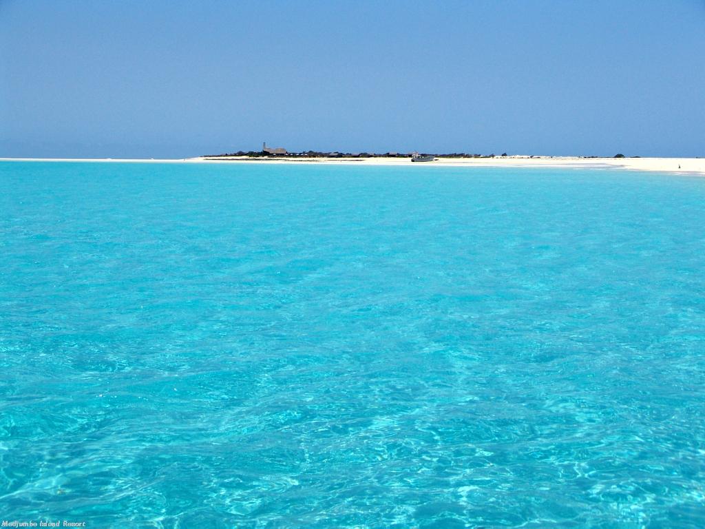 Pemba Island Tanzania (7)