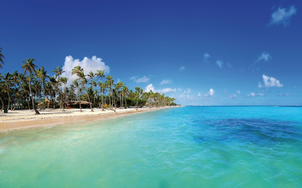 Strand Punta Cana (Dominicaanse Republiek)