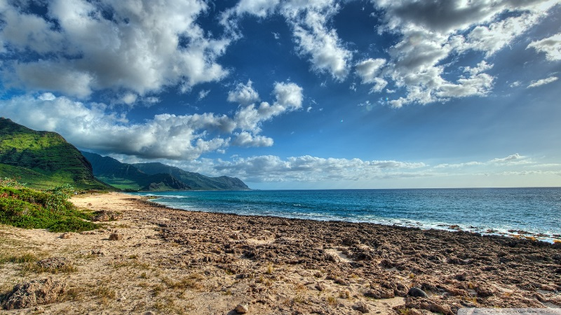 Ka'ena Point Beach, O'ahu.