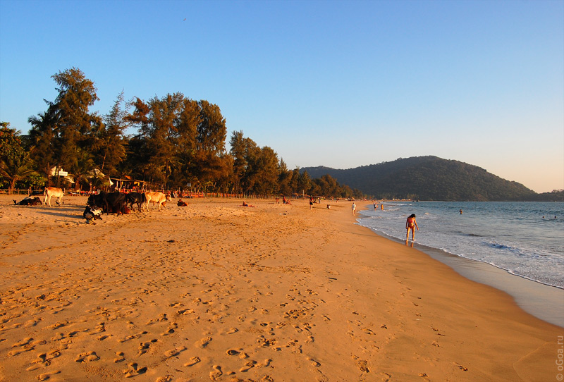 Agonda Goa