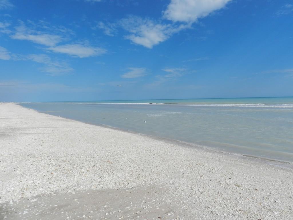 Eighty mile beach Australië
