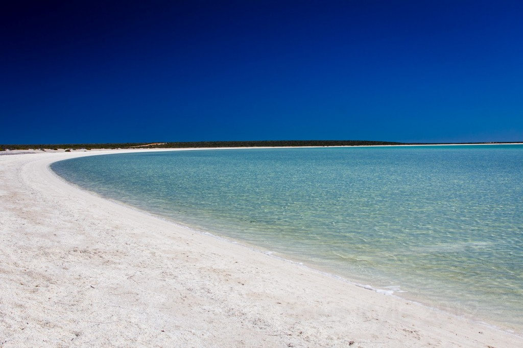 Shell Beach, Shark Bay
