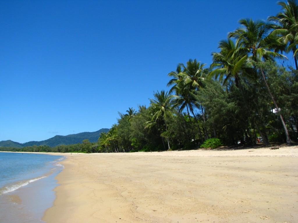 Palm Cove beach Australië