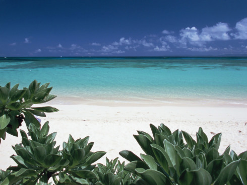 beach_of_okinawa